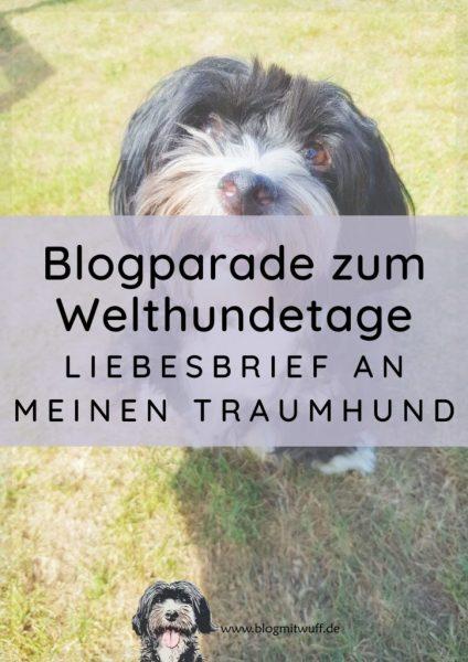 Titelbild zu Blogparade zum Welthundetag Liebesbrief an meinen Traumhund